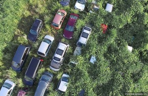 Some-of-the-cars-have-entirely-disappeared-in-the-wild-grass-Never-Before-Seen-Images-Reveal-How-The-Fukushima-Exclusion-Zone-Was-Swallowed-By-Nature-300x194