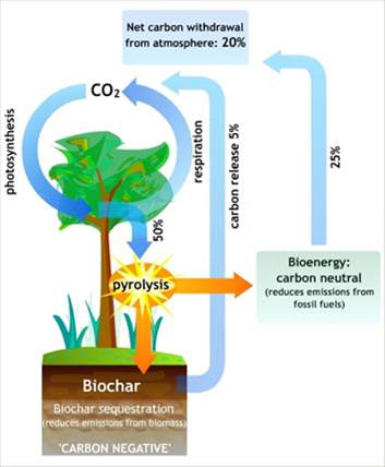 Source: http://www.greeninnovation.co.uk/new/900/15/biochar.html - 6 June 16